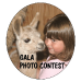 GALA Photo Contest